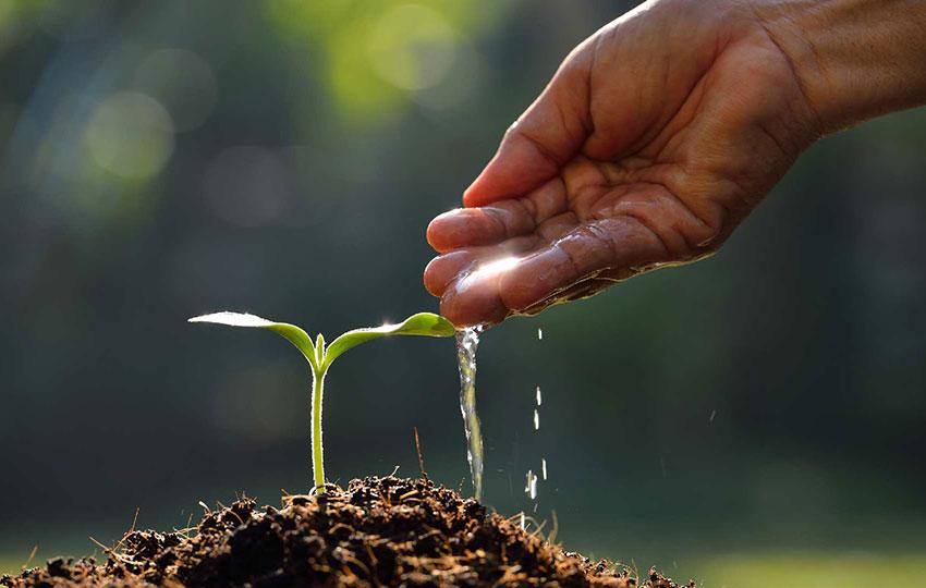 Πράσινη επιχειρηματικότητα – Ευκαιρία για την αύξηση της απασχόλησης των νέων!