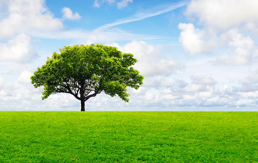 Έχετε ιδέες για μια πράσινη επιχείρηση? Ελάτε να τις κάνουμε πράξη!