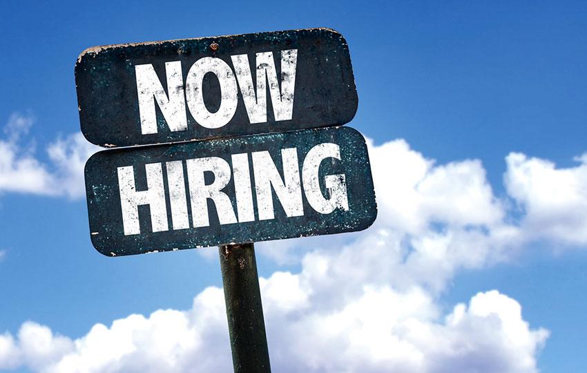 Looking for a Sales Executive/Representative