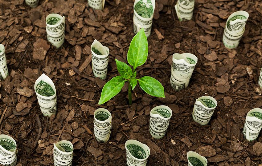 5 μυστικά μιας επιτυχημένης επένδυσης