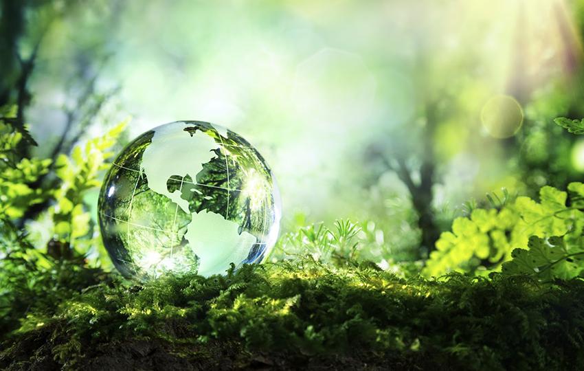 """Ένας καλύτερος """"πράσινος κόσμος"""" για όλους τους νέους"""