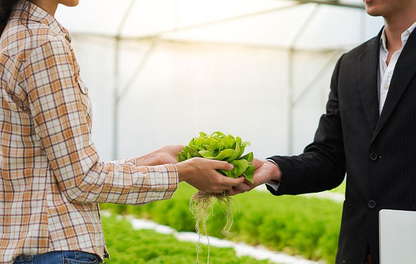 Κυκλική οικονομία & Αλυσίδες εφοδιασμού τροφίμων – Συμμετοχή στην έρευνα